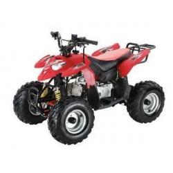 Квадроцикл POLAR FOX ATV50