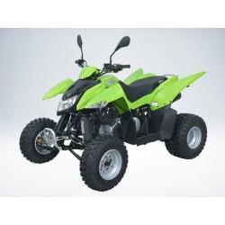 Квадроцикл QuadRaider 300 SS